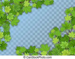 arbre, feuilles, ensemble, branches, vert