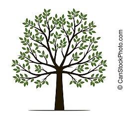 arbre, forme, illustration., vecteur, leaves., contour, plante, garden.