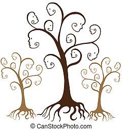 arbre généalogique, faces