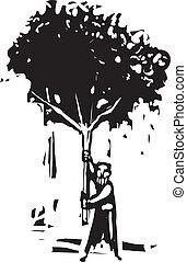 arbre, homme