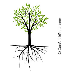 arbre, illustration