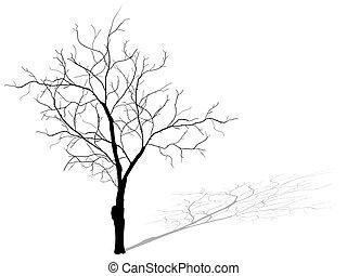 arbre mort, isolé, eps, 10., fond, blanc