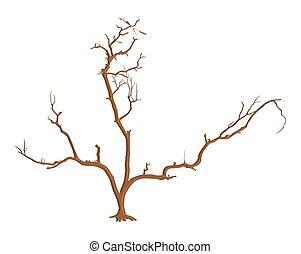 arbre, mort, tige
