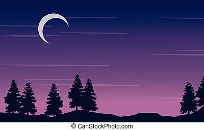 arbre, nuit, silhouette, paysage, lune