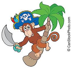 arbre, paume, pirate, singe