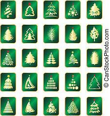 arbre sapin, collection