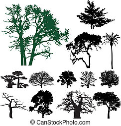 arbre, silhouette, collection