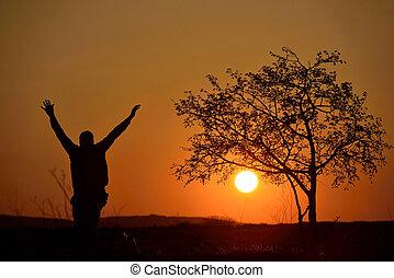 arbre, silhouette, coucher soleil, fond, homme