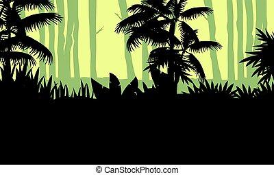 arbre, silhouette, jungle, paysage