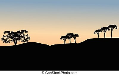 arbre, silhouette, matin