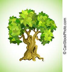 arbre, symbole, écologie, chêne, vert