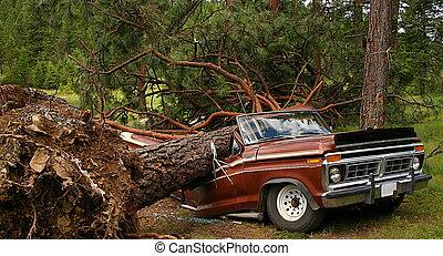 arbre tombé, camion
