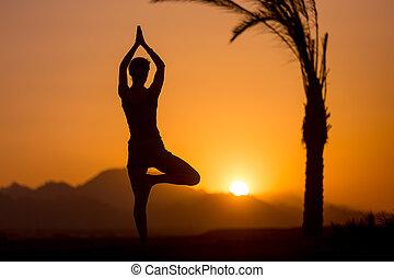 arbre tropical, pose, yoga, emplacement