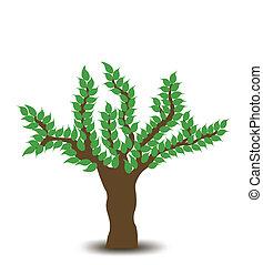 arbre., vecteur, conception