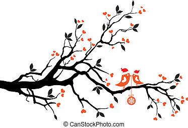 arbre, vecteur, oiseaux, baisers