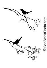 arbre, vecteur, silhouette, oiseau, branche