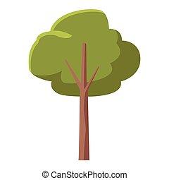 arbre, vert, nature