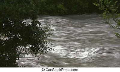 arbres., river., vue, par, inondation