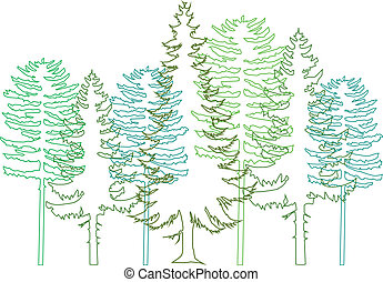 arbres sapin, vecteur