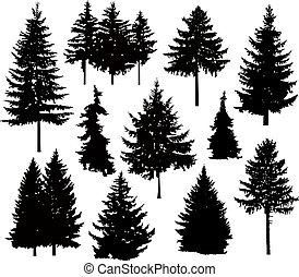 arbres, silhouette, pin, différent