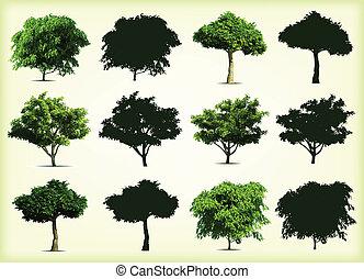arbres., vecteur, vert, collection, illustration