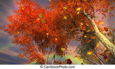 arc-en-ciel, (1035), feuilles autome, pluie, tomber