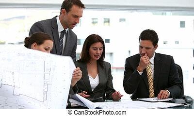 architectes, plans, regarder, quatre