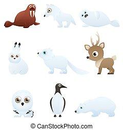 arctique, ensemble, animaux