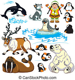 arctique, ensemble, animaux, dessin animé
