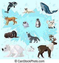 arctique, ensemble, faune, dessin animé