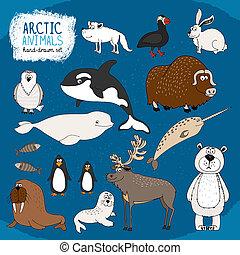 arctique, hand-drawn, animaux, ensemble