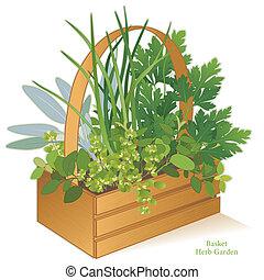 aromate, bois, panier, jardin