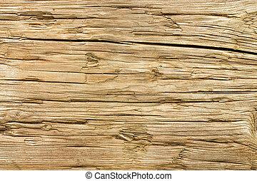 arrière-plan., bois, vieux, a mûri, texture