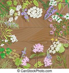 arrière-plan., fleurir, bois, herbes