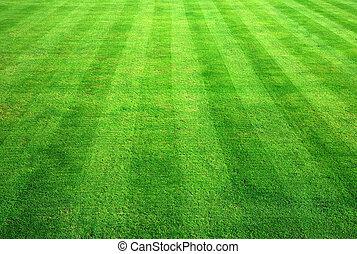 arrière-plan., herbe, vert, bowling