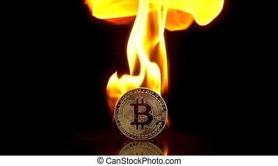 arrière-plan., isolé, noir, monnaie, brûler, mouvement, 250fps., lent, prises, bitcoin