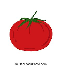 arrière-plan., main, blanc, isolé, tomate, dessiné, style