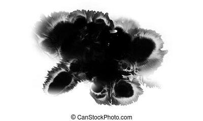 arrière-plan noir, goutte, encre, sur, surface, écarts, hd, blanc