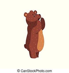 arrondi, childrens, brun, tail., autocollant, hurlement, dessin animé, forêt, animal, plat, creature., affiche, livre, sauvage, fourrure, court, grisonnant, vecteur, bear., petit, ou, oreilles
