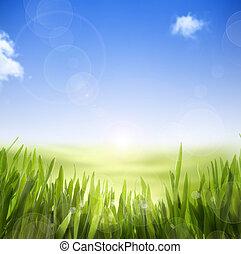 art, nature, printemps, résumé, ciel, fond, herbe