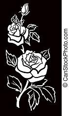 art, vecteur, graphique, fleur, w, rose