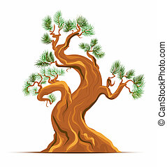 art, vieux, vecteur, arbre, pin