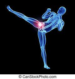 articulation coxo-fémorale, athlètes, douloureux