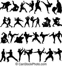 arts martiaux, divers, positions