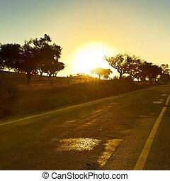 asphalte, portugal, route, directement