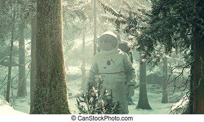 astronaute, forêt, neige, explorer