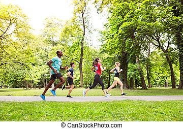 athlètes, park., courant, groupe, ensoleillé, vert, jeune