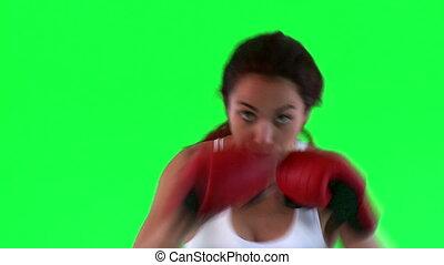athlétique, femme, jeune, boxe
