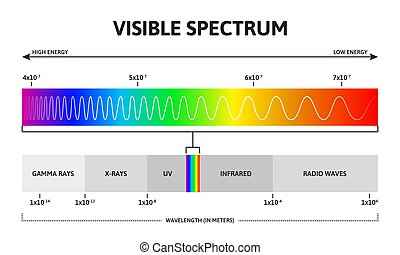 augmenter, spectrum., spectre, infographic, longueur onde, visible, couleur, gamme, illustration., vecteur, fréquence, lumière soleil