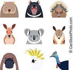 australien, animaux, icônes, plat